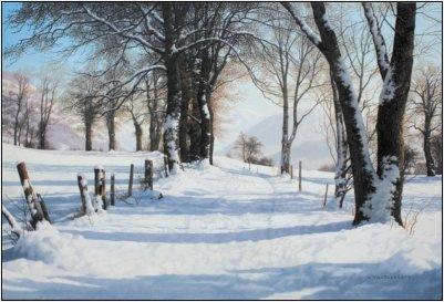 chemin_de_neige_a_mieussy_haute-savoie_0