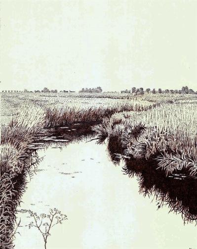 Afbeeldingsresultaat voor bep bernard schilderij
