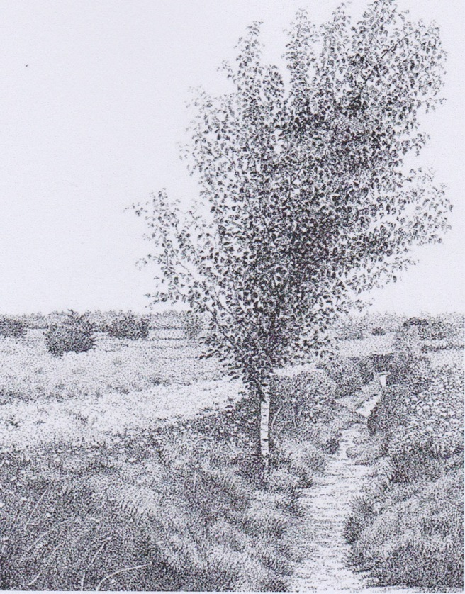 fochtloerveen